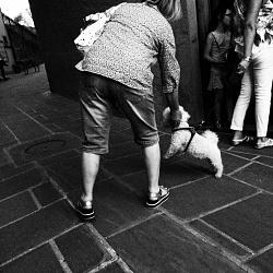 MOMENTI - Fiumalbo 2016 - Momenti di vita, di gente, di quotidianità e di emozioni, in un borgo appenninico