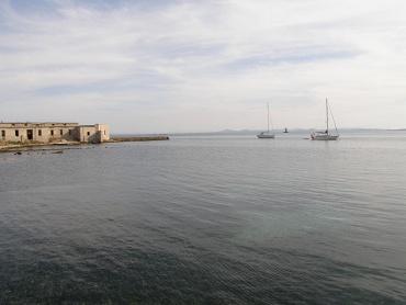 Asinara national park - Italy