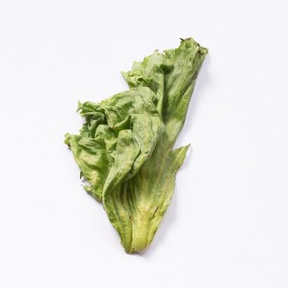 Salad leaf, my fridge - 02/09/2018