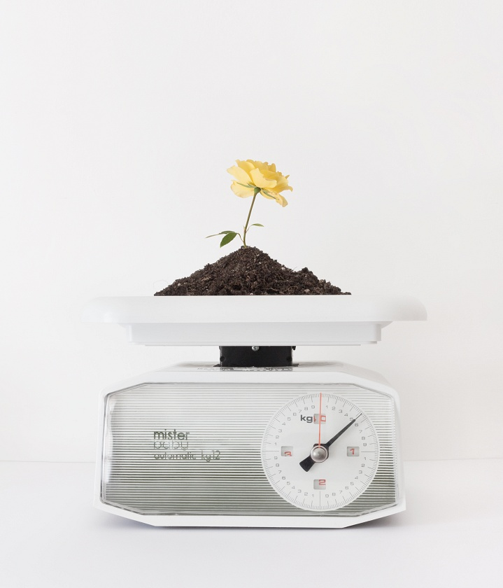 The weight of growth