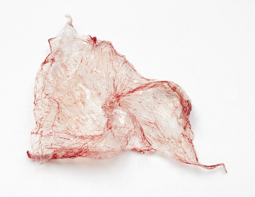 Sculpture II - menstrual blood